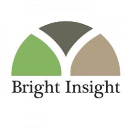 Bright Insight360x360